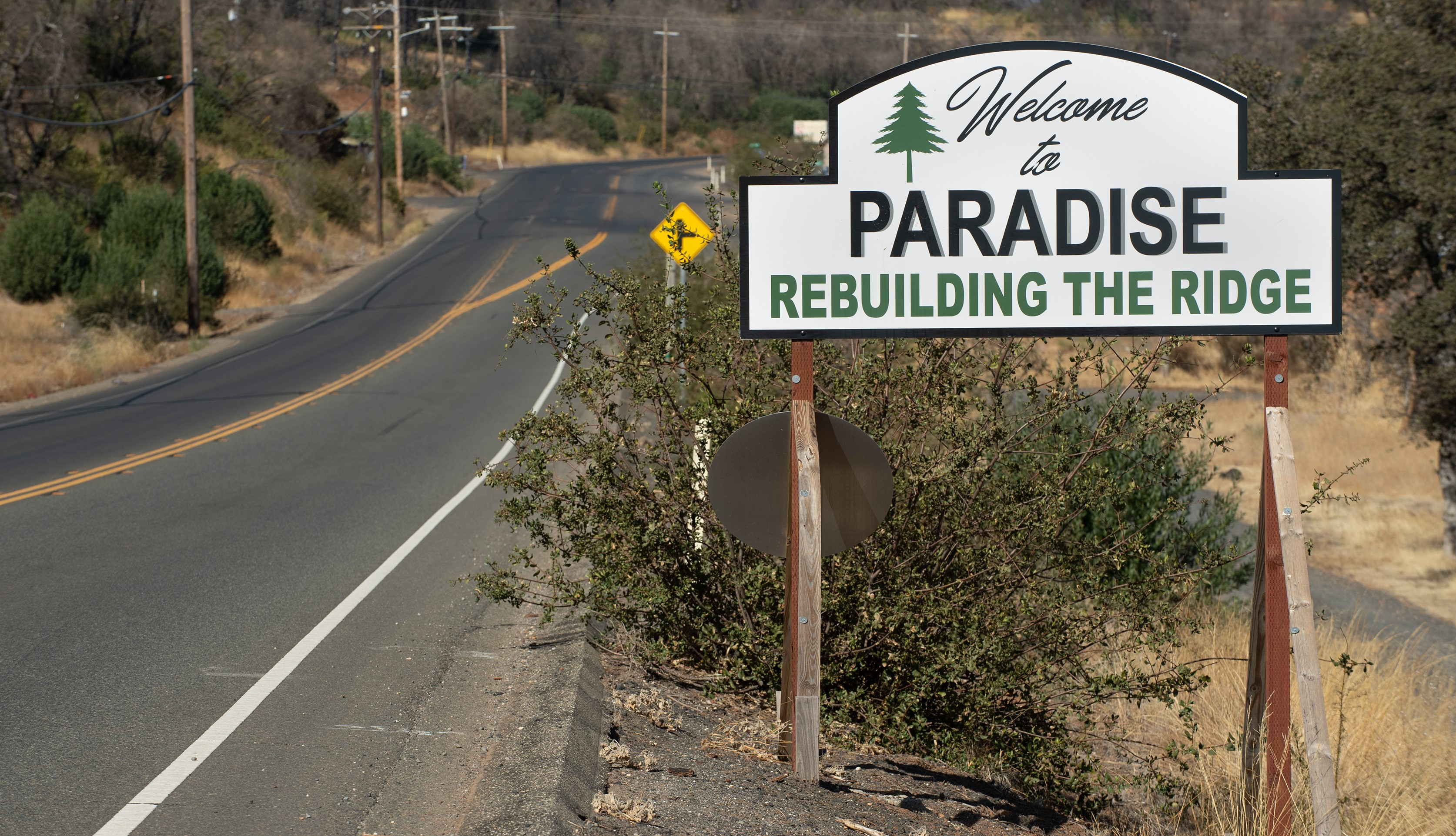 paradise_sign_Resiliency